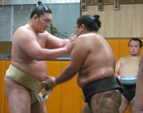 bb-sd-130819-hakuhou-ns-big.jpg