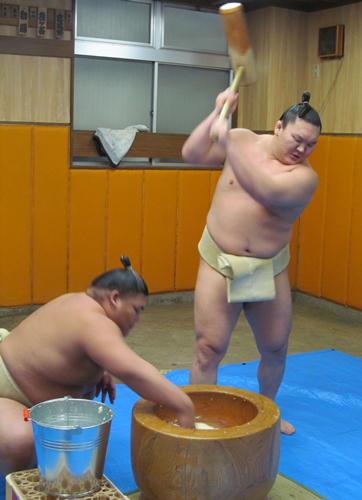 sp-hasei1312230-hakuhou-ns-big.jpg