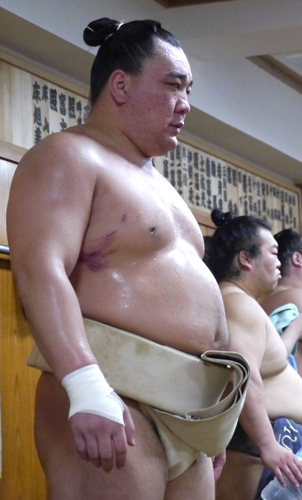 sp-hkoharuma-ns-big.jpg
