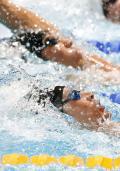 メダル逸す!入江4位萩野5位/世界水泳